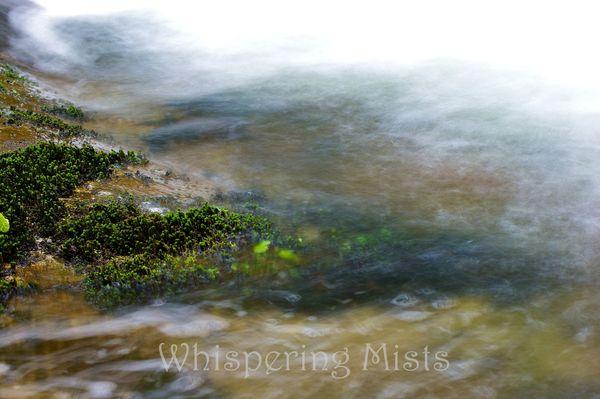 DSC09360 watermarked