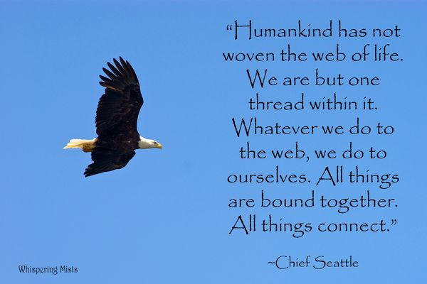 Chief Seattle all things are connected